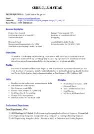 resume writing cost