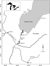 Phosphorus Load Estimation In The Saginaw River Mi Using A