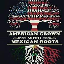 mexican american pride.  American American Grown With Mexican Roots Inside Pride Pinterest