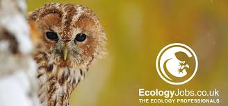 Introducing Ecology Jobs A Job Site Dedicated To Ecologists Jobs
