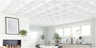 pvc vinyl and plastic ceiling tiles