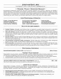 12 Best Procurement Manager Resume Format Resume Pmo Director Resume