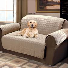 waterproof sofa cover for pets beautiful faux suede pet furniture covers for sofas loveseats and chairs of waterproof sofa cover for pets