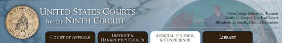 Judicial Council Form Complaint Fascinating Judicial Misconduct