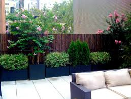 Small Picture Patio Potted Plants Home Design Ideas and Pictures