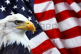 Patriotic Eagle Stock Photos Images. Royalty Free Patriotic Eagle ...