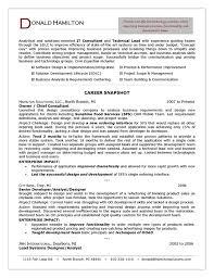 It Consulting Resume Sap Fico Consultant Elemental Portrayal Nov
