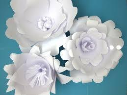 How To Make Paper Flower Backdrop Paper Flower Backdrop Flower Variations Ash And Crafts