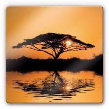 Glasbild Afrika Afrikanischer Sonnenuntergang Als Wandbild Wall
