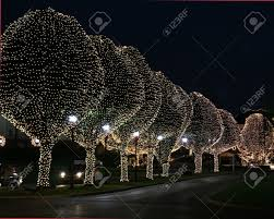 Night time, trees at famous hotel lit with christmas lights on them Stock  Photo -