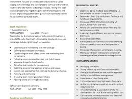 2 Page Resume Template Word Resume Template Beautiful Page Format Pdf Professional Examples Vs 86