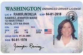 License Randhawa - Drivers Vinny