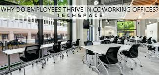 open office concept. open floor office layout ideas plan bad why do employees thrive in coworking spaces concepts concept