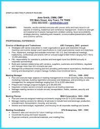 Cfo Resume Doc A Good Owner Manual Example