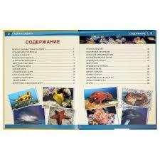 """<b>умка</b>"". <b>моря</b> и океаны. 365 фактов. (<b>энциклопедия</b> а4). твердый"