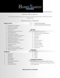 resume format   professional resume  seangarrette cobest cv format for it professionals