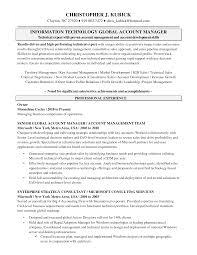 Senior Account Manager Job Description Template Project Resume