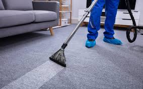 professional furniture cleaning for