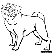Pug Coloring Page Free Pug Online Coloring Images Coloring