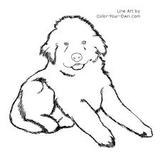 Small Picture Newfoundland Puppy Coloring Page
