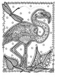 The Crocodile Coloring Pages For Adult And Florida Coloring Page