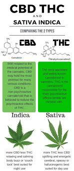 Indica Sativa Hybrid Chart Cbd Vs Sativa Indica Vs Sativa Know The Difference 2019 10 08