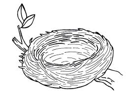 Small Picture Birds Nest clipart colouring Pencil and in color birds nest