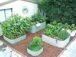 galvanized garden beds steel garden beds impressive raised vegetable garden beds kits made corrugated steel raised