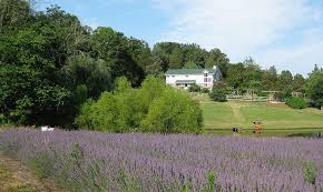 you could win this beautiful organic farm your best word you could win this beautiful organic farm your best 200 word essay green design innovation architecture green building