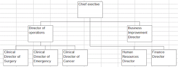 Can You Make An Org Chart In Excel Creating Organisation Charts Using Excel