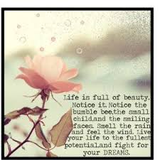 Enjoy The Beauty Of Life Quotes Best of Enjoy Everything Life Has To OfferOpen Your Eyes True Beauty Is