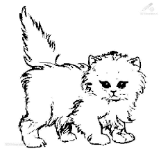 Kitty Cat Coloring Pages Printable At Getdrawingscom Free For