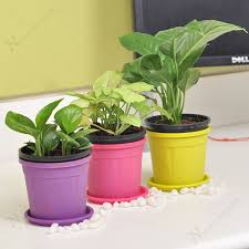 air purifier table top office desk plants these