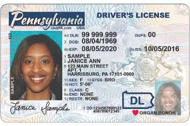 Pa Now Can Still Plane Use On Get License A for Real Your To Id You