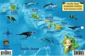 Oahu Fish Chart Hawaiian Islands Reef Creatures Fish Id Card By Frankos Maps Ltd