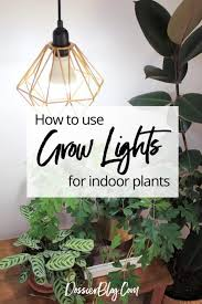 guide to the best led grow lights