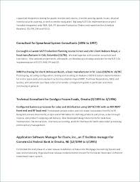 Example Resume Summary Best Example Of Resume Summary Related Post Resume Format Summary Section