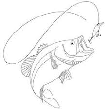 bass fish drawing step by step.  Step Fish Pictures To Color  How Draw A Bass Step By Step Fish Animals  FREE Online Drawing  Step Drawings Pinterest Drawings Fish With Bass By