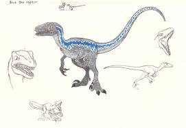 Velociraptor Size Chart 1776676 Artist Smcho1014 Barely Pony Related Blue