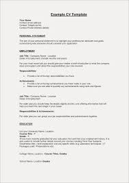Resume Summary Examples For Freshers Free Resume Examples