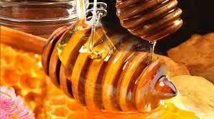 Hasil gambar untuk madu
