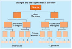 Organisational structure   Factors affecting organisational