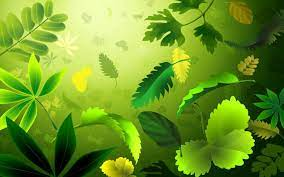 Abstract Green Nature Wallpapers - Top ...