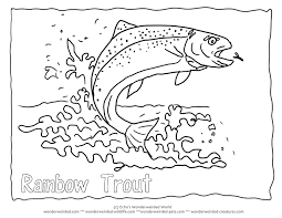 Small Picture Rainbow Trout Picture to Color 4 Rainbow Trout Coloring Page with