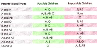 Baby Blood Type Chart Rh Factor Blood Types Chart Blood Group Information