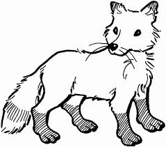 Elegant Animal Jam Arctic Wolf Coloring Pages Nichome