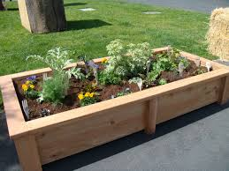 Small Picture Build A Raised Bed Vegetable Garden Home Design Ideas