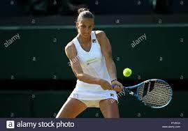 Wimbledon Championships ...