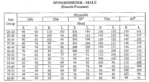 Dynamometer Chart Chatham15 Mot Competency Page 3