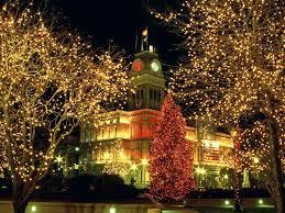 Outdoor christmas lights ...